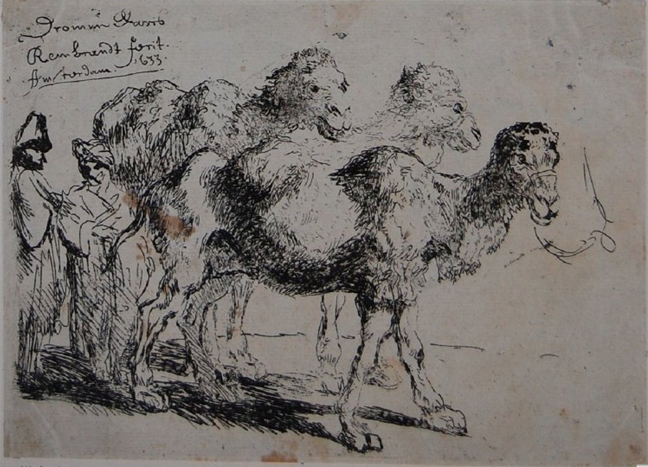 three-camels-and-two-oriental-men